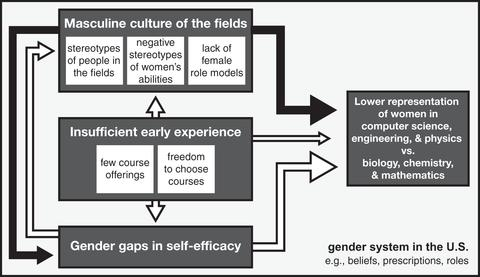 Why are some STEM fields more gender balanced than others?