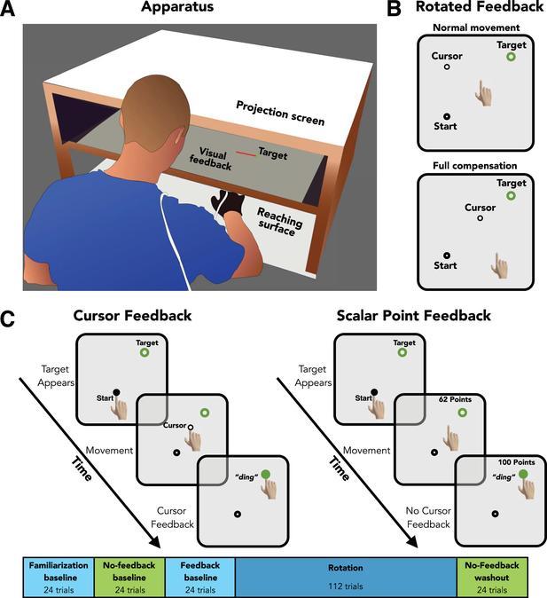 Decomposition of a sensory prediction error signal for