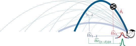 Predictive plus online visual information optimizes temporal