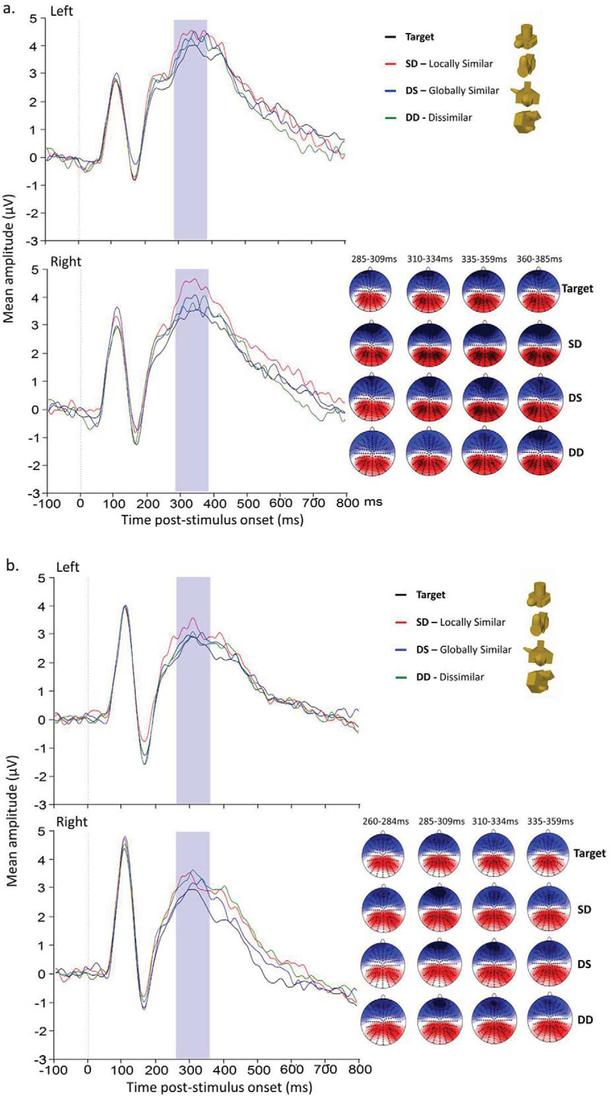 Stereo viewing modulates three-dimensional shape processing